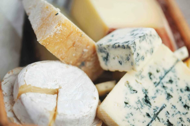 Cheese_OPT.jpg