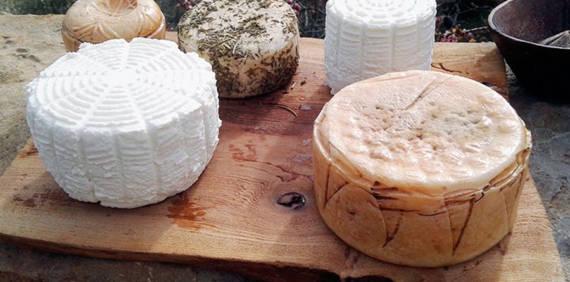 ¿Qué diferencia a un queso artesano de uno que no lo es?