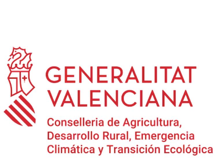 Generalitat-2-1.jpg
